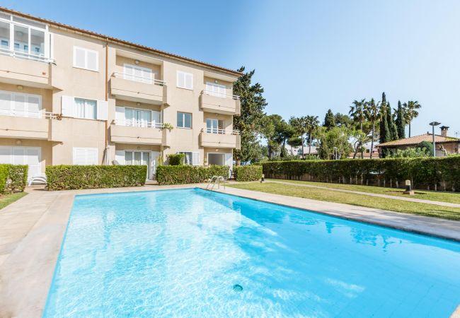 Apartamento en Puerto Pollensa - XIPRER. Acogedor apartamento en el Puerto de Pollensa