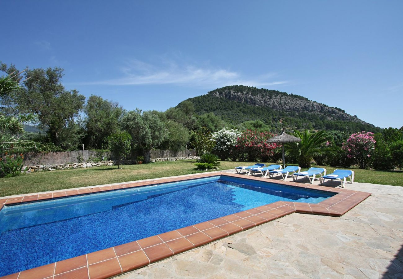 Villa in Pollensa - CARAGOLA. Great garden with nice views